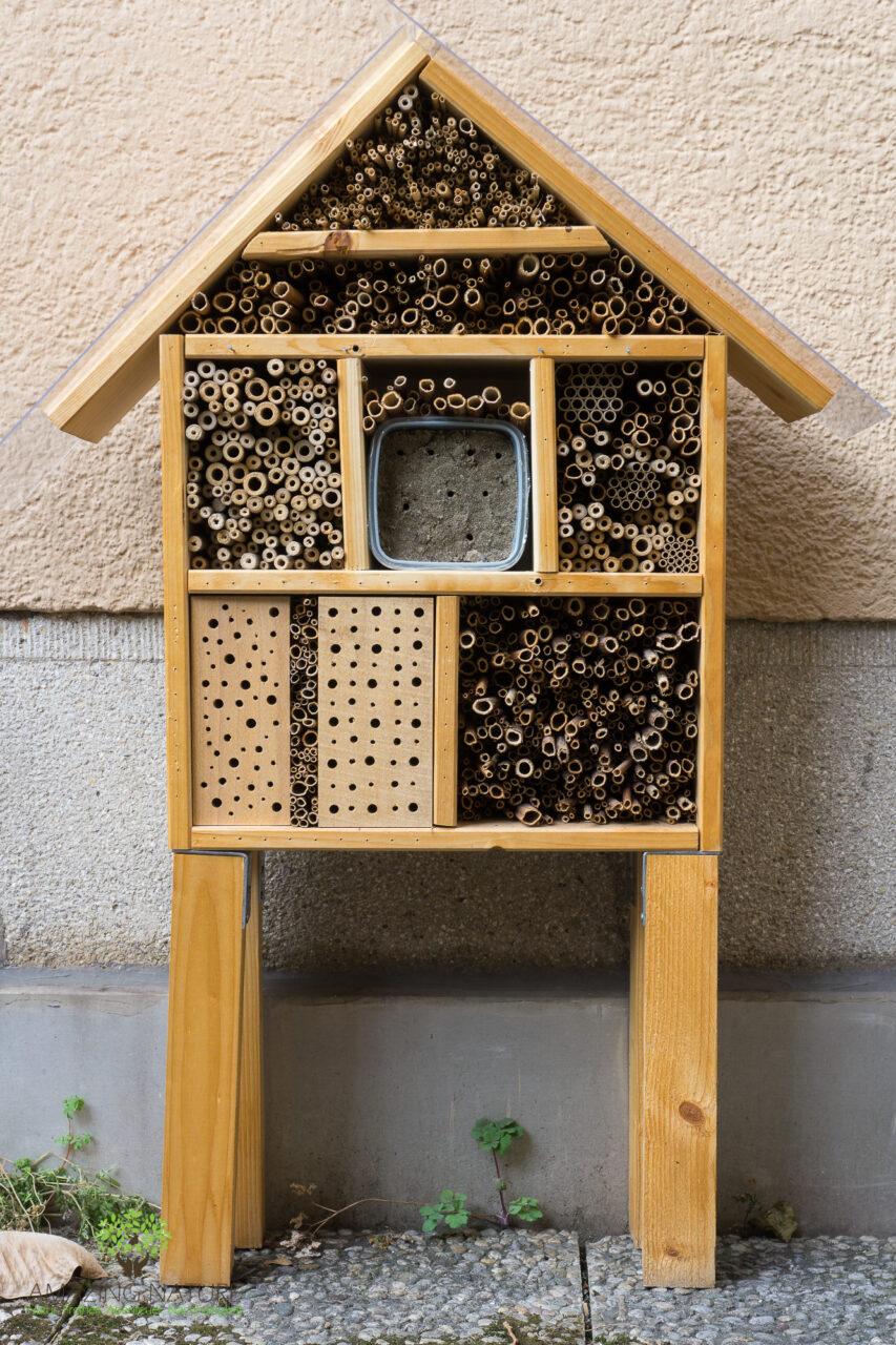 Insektenhotel Fur Wildbienen Selber Bauen Anleitung Fur Dummies